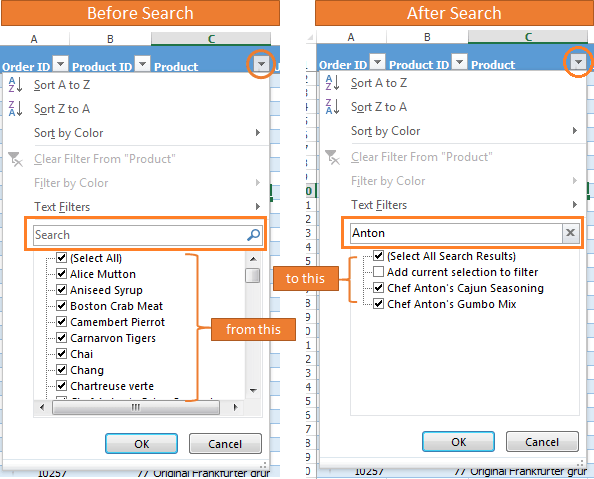 Excel Filter Search