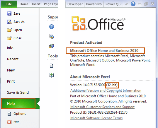 Find version in Excel 2010